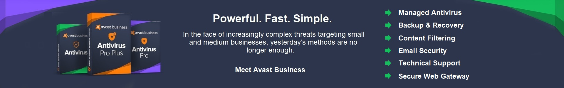 avast business banner